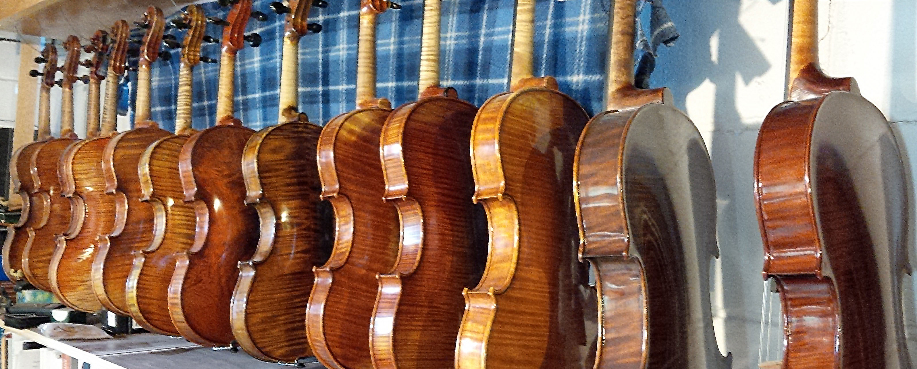 Violins and violas hanging from rack